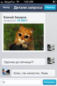 Запрос с котом